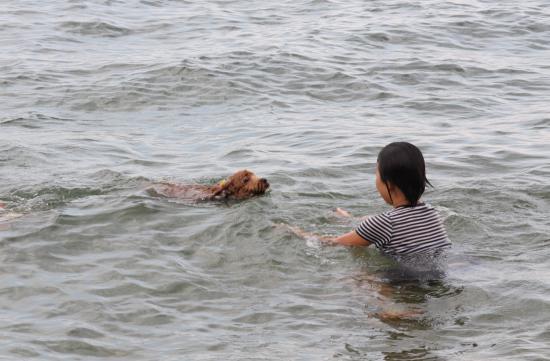 いろはちゃんin琵琶湖