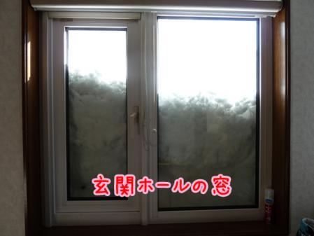 10_20110114142012.jpg