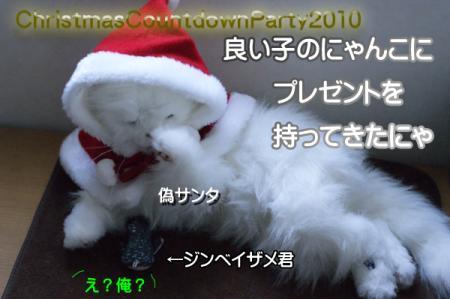 1_20101219135718.jpg