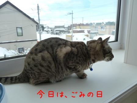 1_20110118121826.jpg