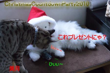 2_20101219135718.jpg