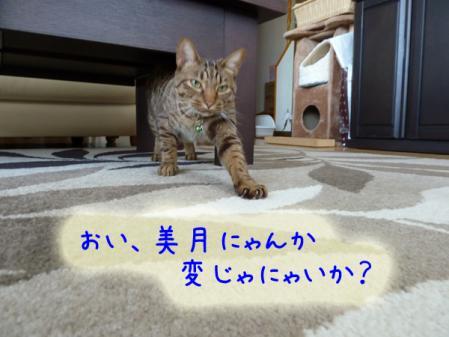 2_20110120100500.jpg