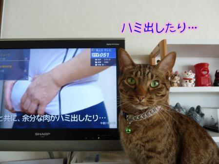 2_20110203083555.jpg