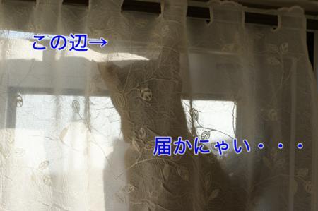 3_20100822162712.jpg