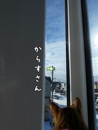 3_20110103084600.jpg