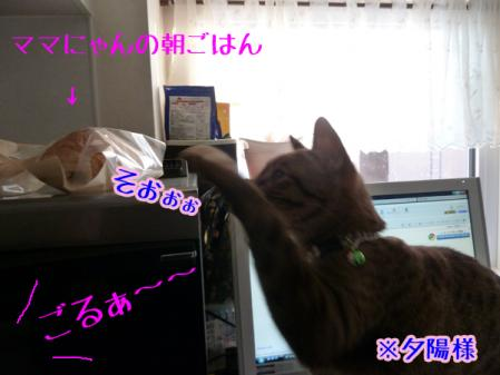 3_20110211150032.jpg