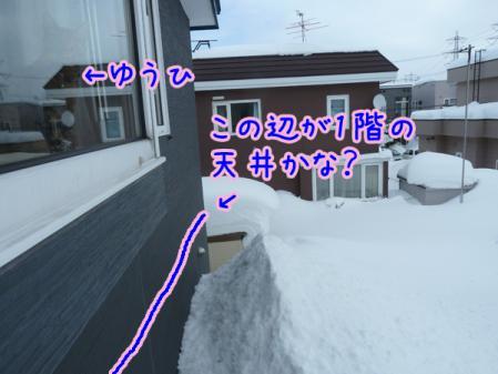 4_20110118121824.jpg