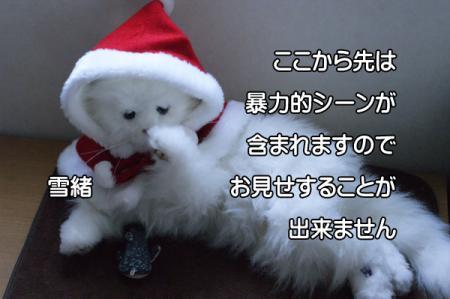 5_20101220005920.jpg