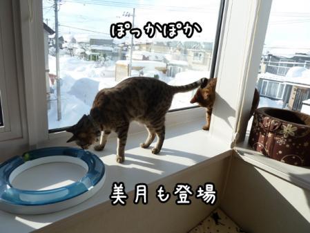 6_20110114142045.jpg