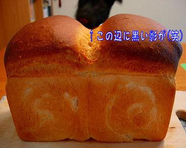 bread34.jpg