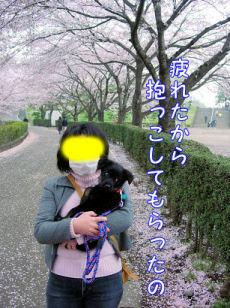 emoshichi105.jpg