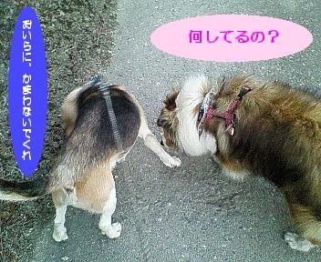 rioasyuri2.jpg