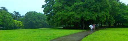 砧公園TS3B0537
