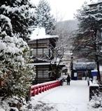 雪雪2 1010590