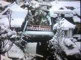 俯瞰 雪TS3B0769