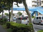目白通りの貫井歩道橋