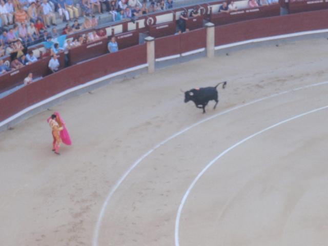 15.AUGY.2010 Madrid 071