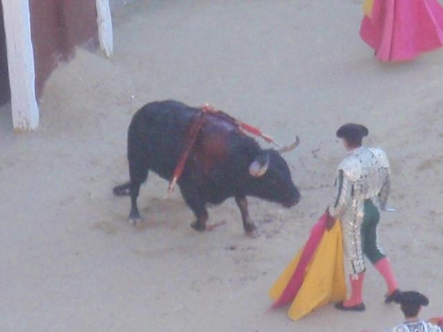 15.AUGY.2010 Madrid 081