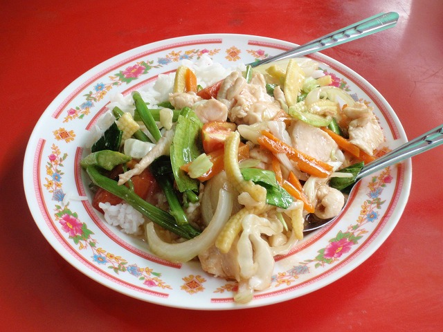 11.NOV.2010 ChiangMai-Ko Phayam 015