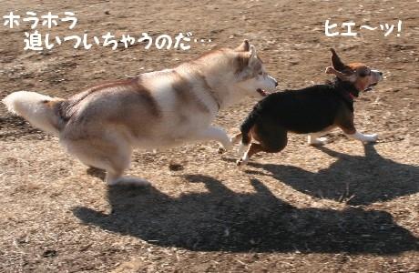 20070115221934.jpg
