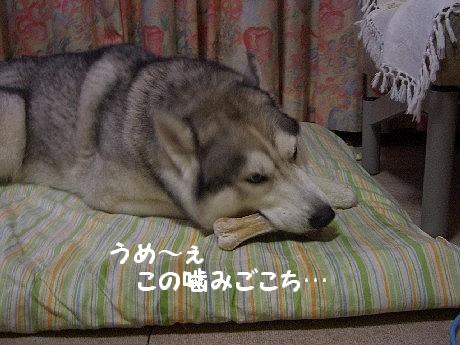 CIMG9671.jpg