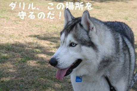 IMG_2268.jpg
