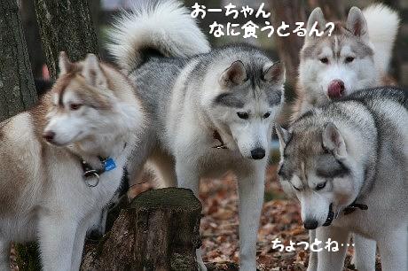 IMG_4643.jpg
