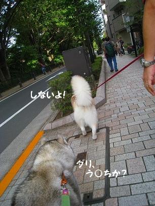 IMG_5692.jpg