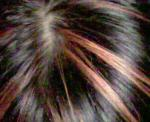 200704151545001.jpg
