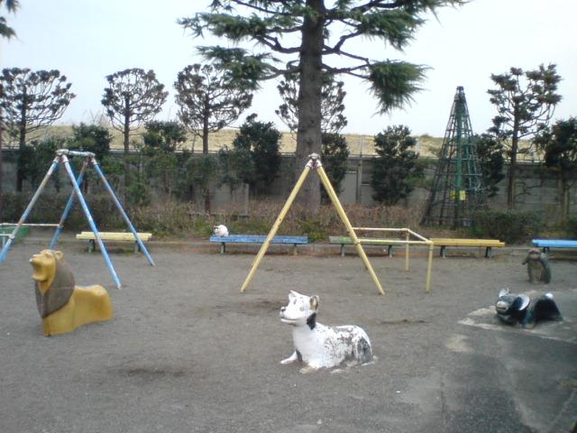 伊勢崎公園クイズ