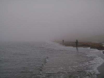 海アメ釣り場