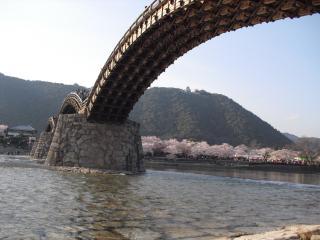 錦帯橋の下!