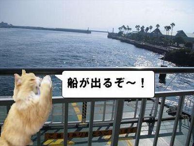 いざ、出航♪