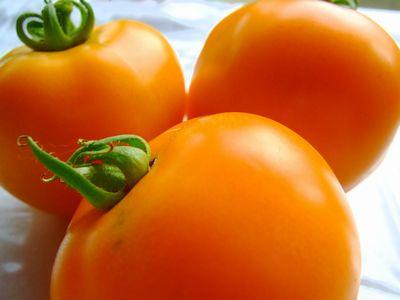 トマトの表