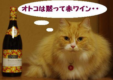 ワインとあーた