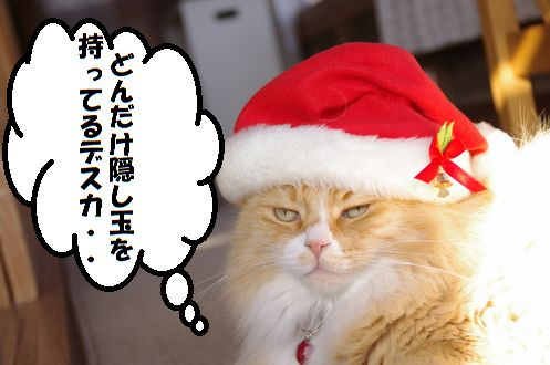 サンタ帽子・・