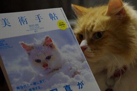 猫さん寒そう・・