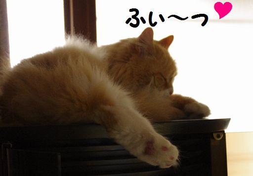 キモチよいデス~