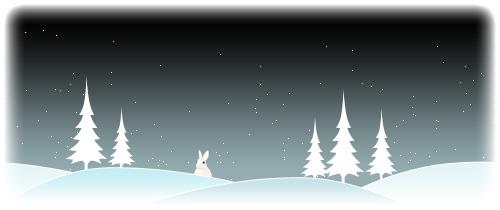 snow_2007_7w.jpg