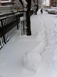 20110110_sagicho_4.jpg