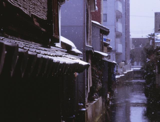 長浜 粉雪2