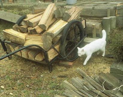 白いネコと薪
