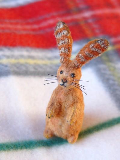 2011ウサギその2