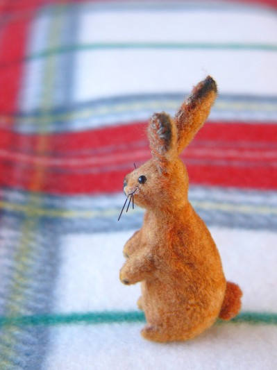 2011ウサギその3
