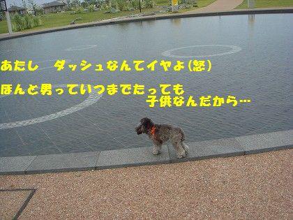 s-2008_0613_172509-DSC00160.jpg
