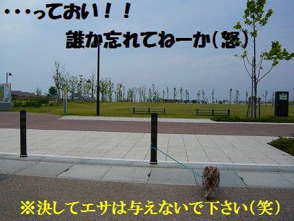 s-2009_0609_144840-P1010056.jpg