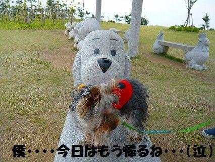 s-2009_0609_151114-P1010074.jpg