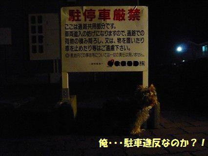 s-2009_0611_231516-P1010111.jpg