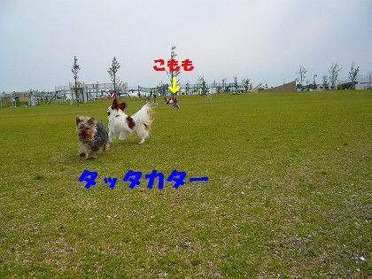 s-2009_0613_170915-P1010122.jpg