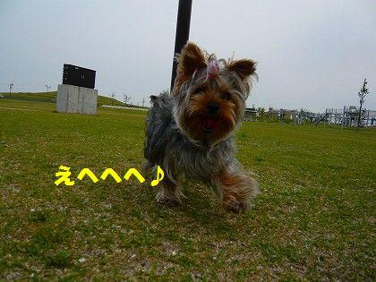 s-2009_0613_172321-P1010128.jpg